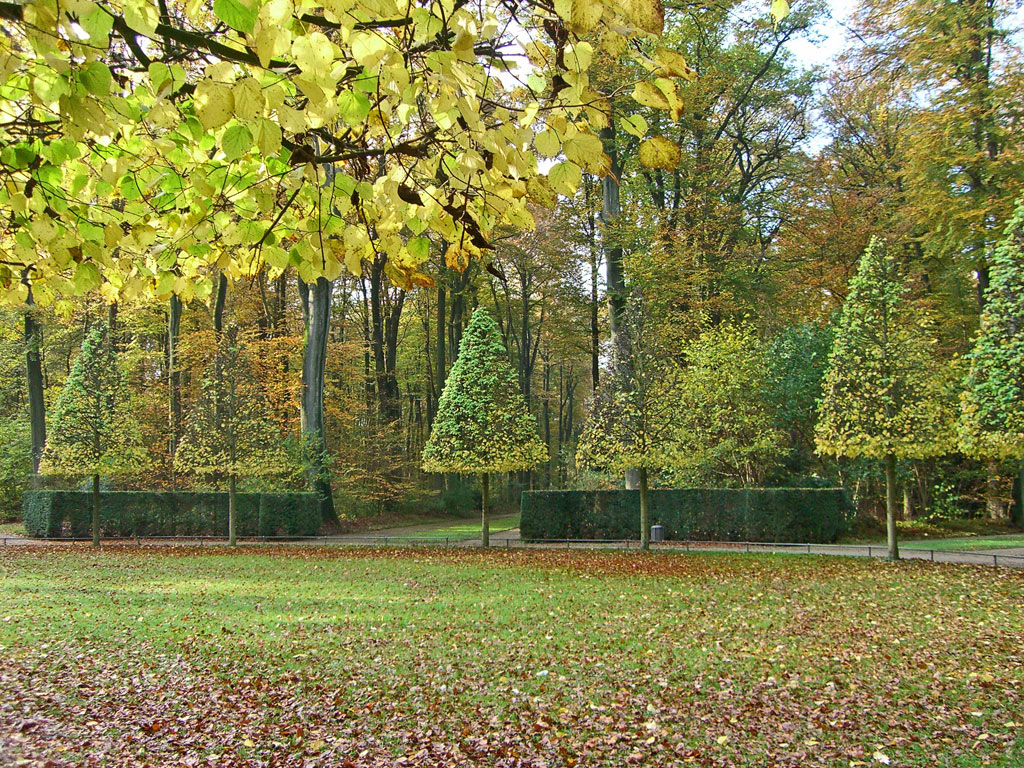 Herbstliches Licht im Schlosspark