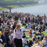 Buntes Treiben auf der Rheinwiese beim Japantag