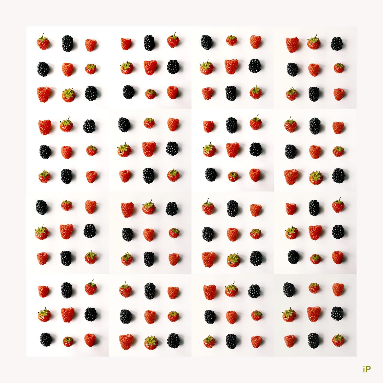 Beeren im Quadrat x 16